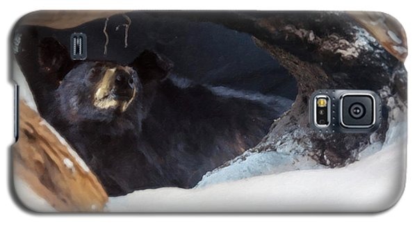 Galaxy S5 Case featuring the digital art Black Bear In Its Winter Den by Chris Flees