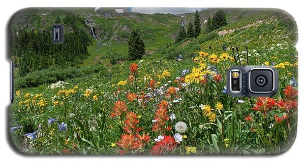 Black Bear Pass Landscape Galaxy S5 Case