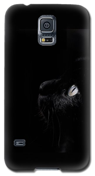Black Beauty Galaxy S5 Case by Laura Melis