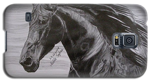 Galaxy S5 Case featuring the drawing Black Beauty by Melita Safran