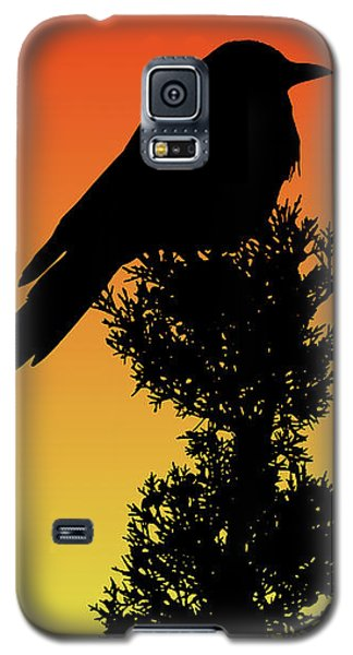 Black-billed Magpie Silhouette At Sunset Galaxy S5 Case