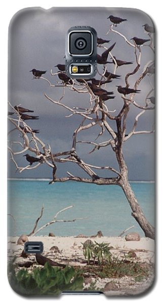 Galaxy S5 Case featuring the photograph Black Birds by Mary-Lee Sanders