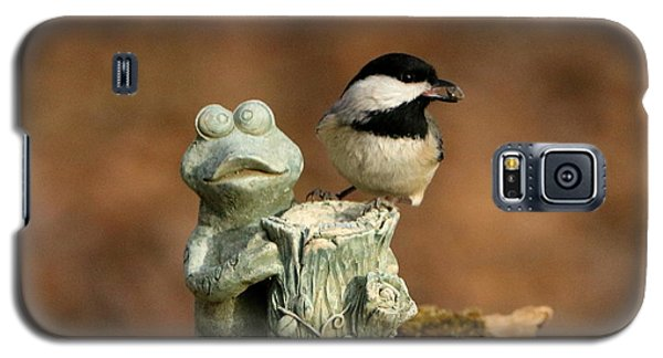 Black-capped Chickadee And Frog Galaxy S5 Case