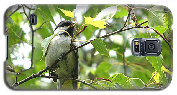 Galaxy S5 Case featuring the photograph Black Capped Chickadee  by Angie Rea