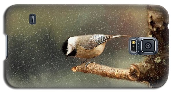 Galaxy S5 Case featuring the photograph Black Capped Chickadee by Darren Fisher