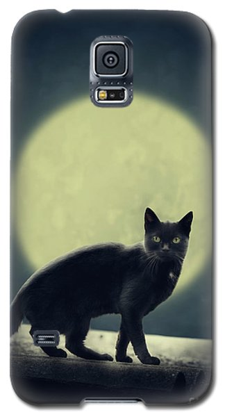 Black Cat And Full Moon Galaxy S5 Case