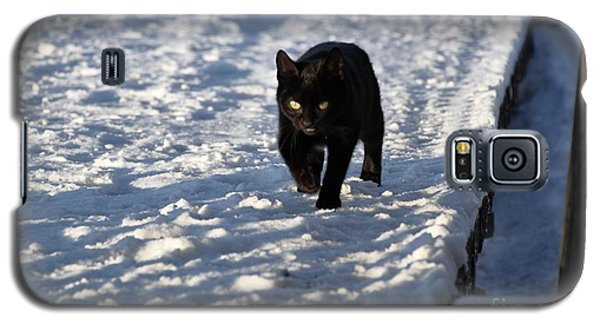 Black Cat In Snow Galaxy S5 Case