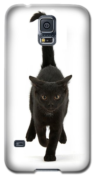 Black Cat On The Run Galaxy S5 Case