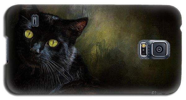 Black Cat Portrait Galaxy S5 Case