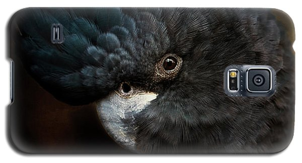 Black Cockatoo Galaxy S5 Case