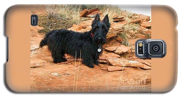 Black Dog Red Rock Galaxy S5 Case