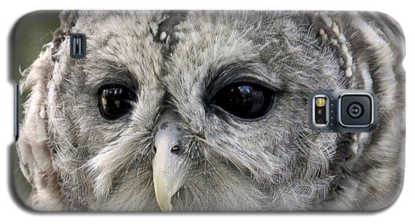 Black Eye Owl Galaxy S5 Case