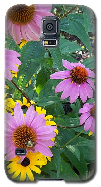 Black Eye Susans And Echinacea Galaxy S5 Case