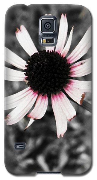 Galaxy S5 Case featuring the photograph Black Eyed by Deborah  Crew-Johnson