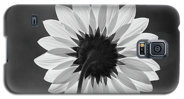 Black-eyed Susan - Black And White Galaxy S5 Case