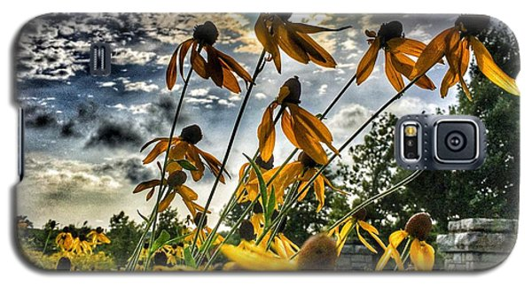 Galaxy S5 Case featuring the photograph Black Eyed Susan by Sumoflam Photography