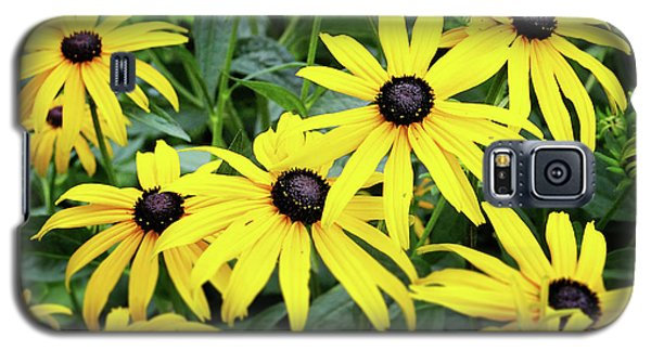 Daisy Galaxy S5 Case - Black Eyed Susans- Fine Art Photograph By Linda Woods by Linda Woods