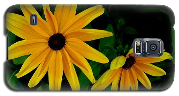 Black-eyed Susans Galaxy S5 Case by Robert Knight