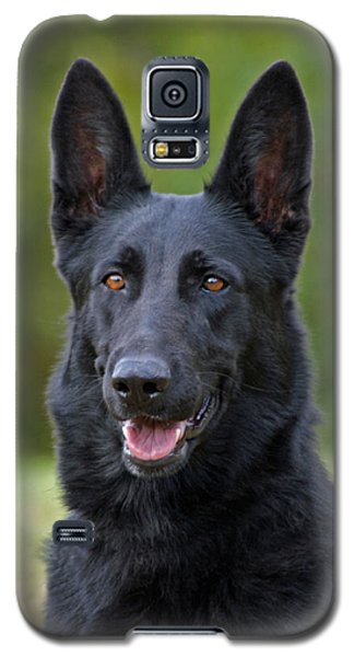 Black German Shepherd Dog Galaxy S5 Case