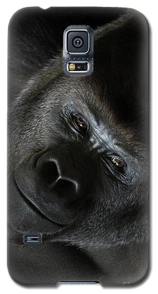 Black Gorilla Smile Galaxy S5 Case