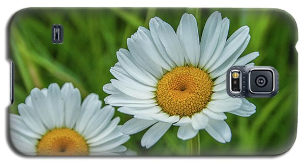 Black-headed Daisy's Galaxy S5 Case