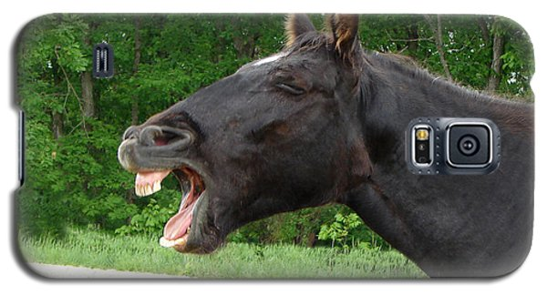 Black Horse Laughs Galaxy S5 Case