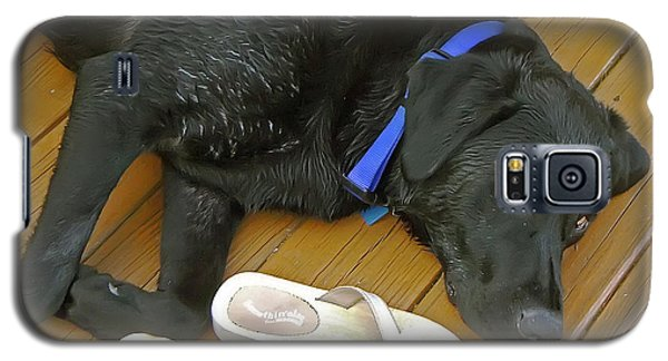 Black Lab Resting Galaxy S5 Case by Brian Wallace