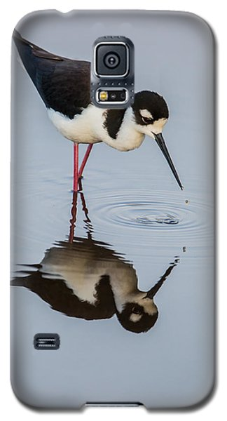 Black-necked Stilt Reflection Galaxy S5 Case by Andres Leon