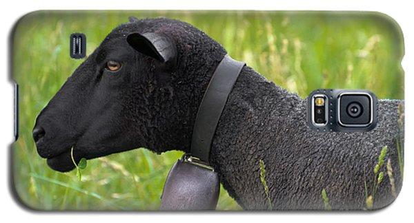 Black Sheep Galaxy S5 Case