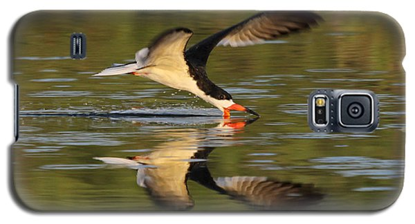 Black Skimmer Fishing Galaxy S5 Case