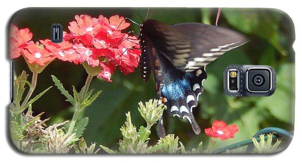 Black Swallowtail  Galaxy S5 Case