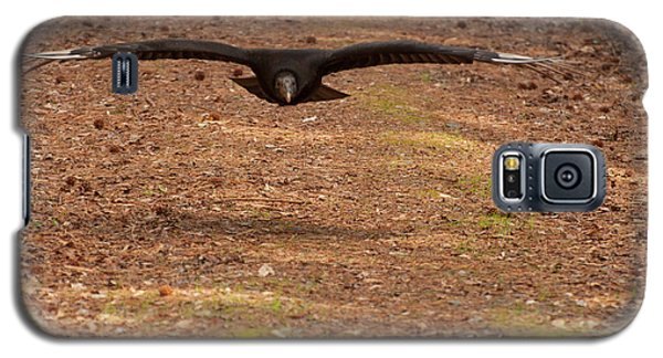 Black Vulture In Flight Galaxy S5 Case by Chris Flees