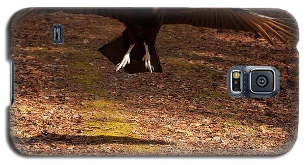 Black Vulture Landing Galaxy S5 Case by Chris Flees