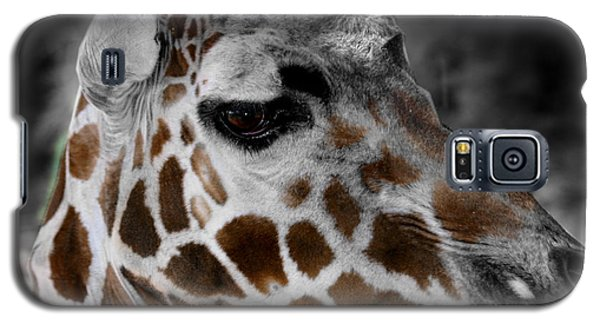 Black  White And Color Giraffe Galaxy S5 Case