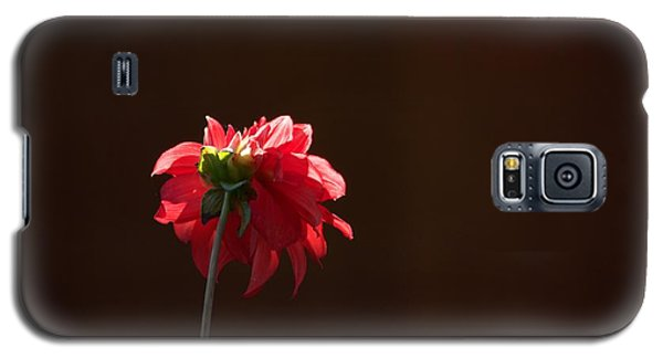 Black With Rose Galaxy S5 Case