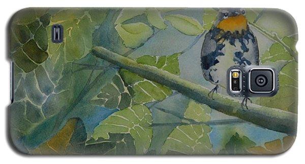 Blackburnian Warbler I Galaxy S5 Case