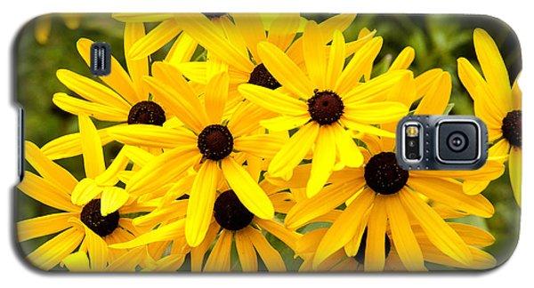 Blackeyed Susan Galaxy S5 Case