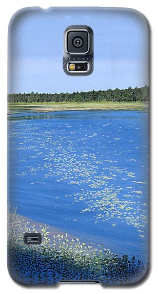 Blackstone Bog Galaxy S5 Case