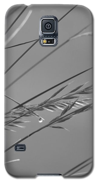 Blades Of Gray Galaxy S5 Case