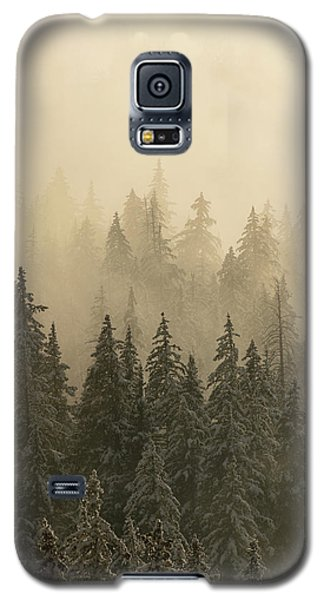 Galaxy S5 Case featuring the photograph Blanket Of Back-lit Fog by Dustin LeFevre