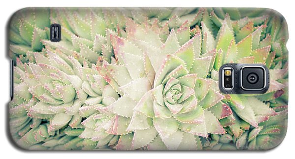 Blanket Of Succulents Galaxy S5 Case