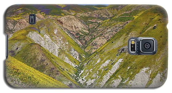 Blanket Of Wildflowers Cover The Temblor Range At Carrizo Plain National Monument Galaxy S5 Case