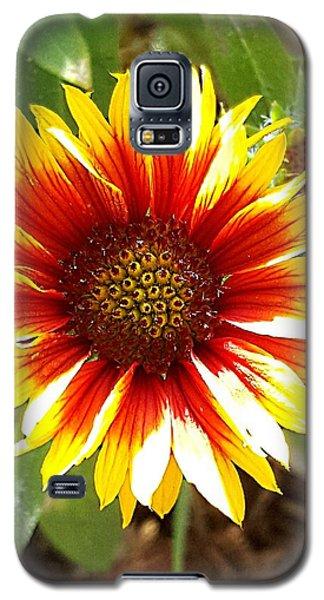 Blanketflower Galaxy S5 Case