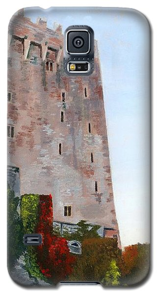 Galaxy S5 Case featuring the painting Blarney Castle by Lynne Reichhart