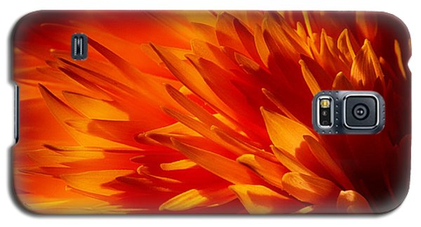Blaze Galaxy S5 Case