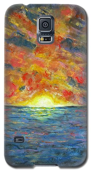 Blazing Glory Galaxy S5 Case by Laurie Morgan