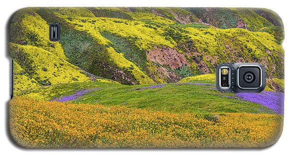 Galaxy S5 Case featuring the photograph Blazing Star On Temblor Range by Marc Crumpler