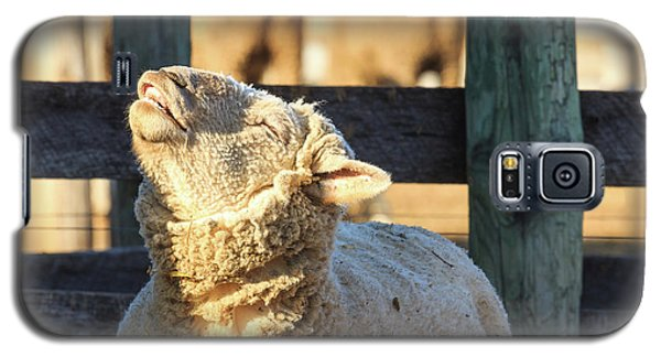 Bleating Sheep Galaxy S5 Case