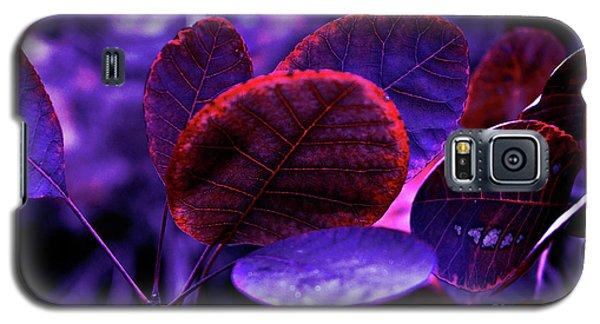 Bleeding Violet Smoke Bush Leaves - Pantone Violet Ec Galaxy S5 Case