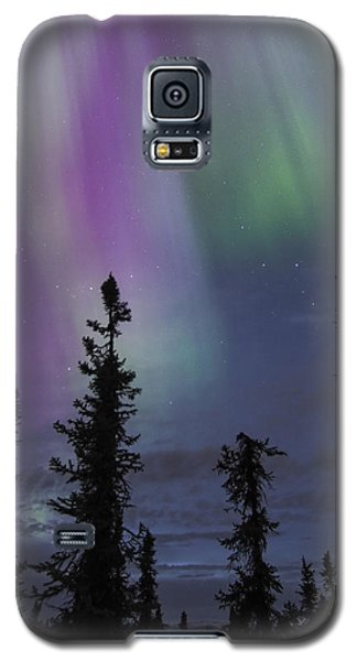 Blended Purples Galaxy S5 Case